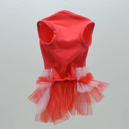 Платье для собак Карнавал №1 29 х 46 см караловый, фото 2