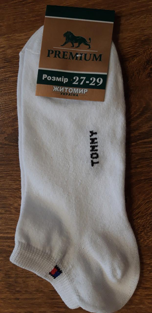 """Носки мужские стрейчевые короткие""""Premium""""в стиле Tommy белые 27-29"""