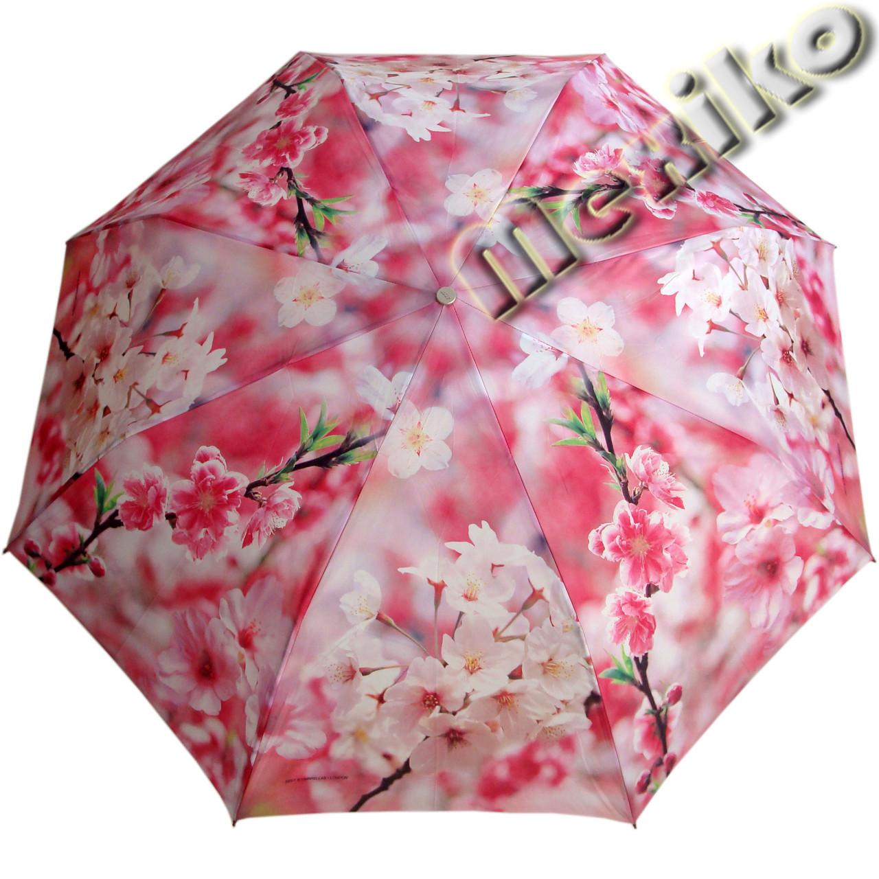 Женский зонт ZEST полный автомат серия Фото, расцветка Розовая сакура