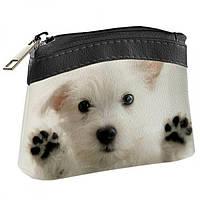 Детский кошелек KID Белый щенок, Детские сумочки, Детские кошельки, Дитячий гаманець KID Білий щеня