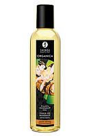 Shunga Massage Oil Organica Almond Sweetness
