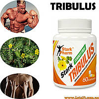 Трибулус Террестрис 60 капсул по 500мг (повышает тестостерон, stark tribulus terrestris)