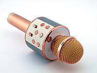 Микрофон с функцией караоке Handheld KTV-858 Karaoke (Wster WS-858) rose gold | AG310040