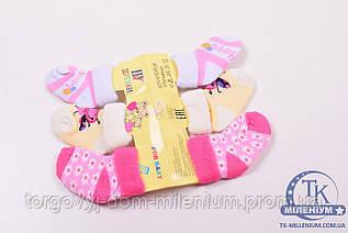 Носки детские махровые Шугуан от 6 до 12 месяцев C2017-2