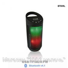 Мобильная колонка Bluetooth BT-809L,Радиоприемник колонка с Bluetooth!Лучший подарок, фото 2