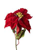 """Искусственный цветок """"Пуансетия"""" Coincasa 70х20см бордовый, зеленый, желтый"""