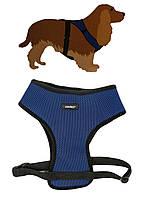 Шлея для собак M 57-80см Zoofari 42х57-80см Синий, Черный