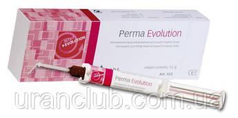 Силер для пломбирования каналов Perma Evolution (Перма Эволюшен) 12 гр.