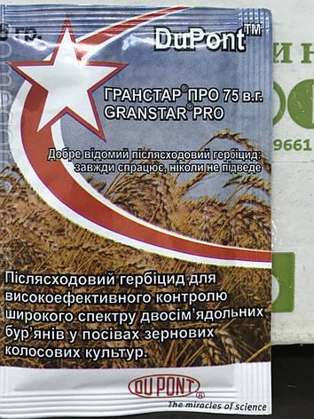Гранстар, пакет 5гр (оригинал) , фото 2