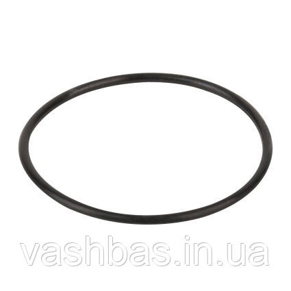 Emaux Уплотнительное кольцо диффузора Emaux (02011004)