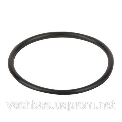 Emaux Уплотнительное кольцо муфты Emaux (02011003)
