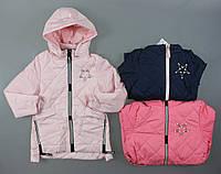 Куртка демисезонная для девочек  Setty Koop оптом, 4-12 лет. [4 года]
