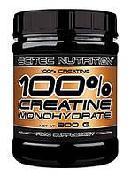 Scitec Nutrition  100% Pure Creatine Monohydrate  (300g)
