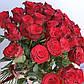 """Букет из 41 розы """"Эльторо"""" (60см), фото 2"""