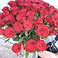 """Букет из 41 розы """"Эльторо"""" (60см), фото 3"""