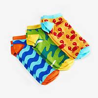 Шкарпетки Dodo Socks набір Alloha 39-41, 3 шт, фото 1