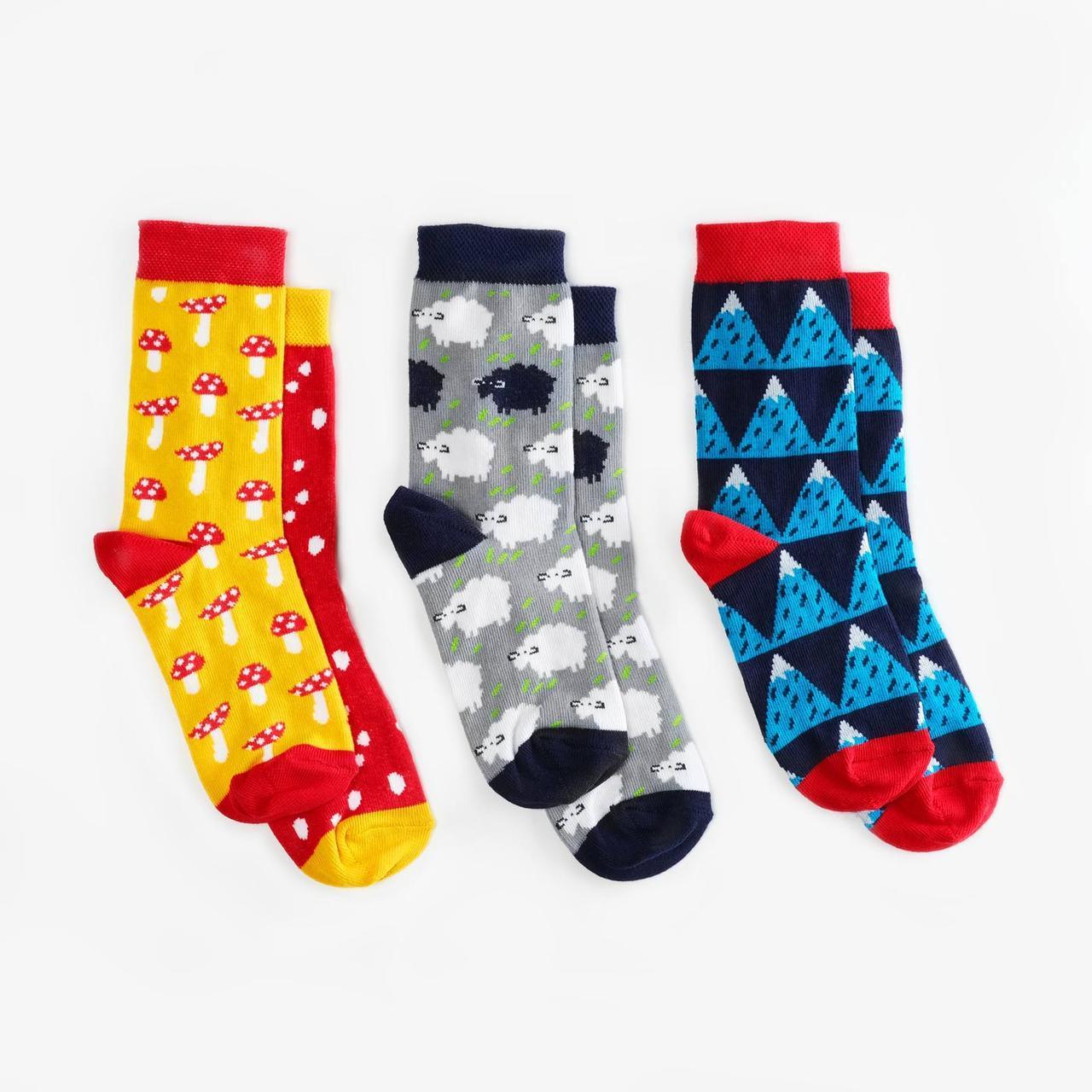 Носки детские Dodo Socks набор Yukon 7-10 лет