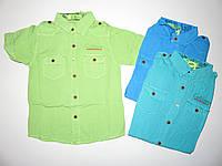 Рубашка  для мальчиков S&D оптом, 134-164 рр [134]