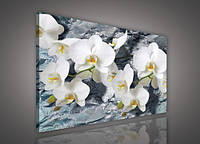 "Картина на холсте ""Цветы: Белые орхидеи"" 80х60 см (PP1505O6)"
