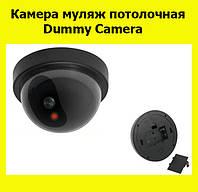 Камера муляж потолочная Dummy Camera!Лучший подарок