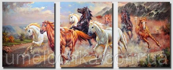 Картина по цифрам на холсте  Триптих. Дикие лошадиТриптих 50 х 120 см(DZ211)