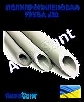 Труба полипропиленовая PN20 d 20х3,4