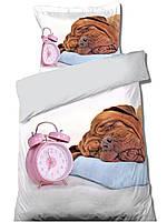 Комплект постельного белья Молодежный Хлопковый 273 Faro 0938 Белый, Коричневый, Синий, Розовый