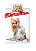 Комплект постельного белья Молодежный Хлопковый NR 322 Faro 8262 Белый, Бежевый, Красный