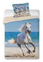 Комплект постельного белья Молодежный Хлопковый NR 323  Faro 8309 Синий