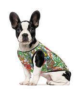 """Борцовка """"Рио"""" для собак мелких и средних пород, Pet Fashion™"""