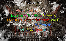 Поступление: Alpha Bottle, Cobra Labs, MyProtein, PVL, SAN, Syntrax, BioTech, Excellent Nutrition, Grengy, Monsters, Scitec Nutrition, VALE. Обновлен раздел Уценка.