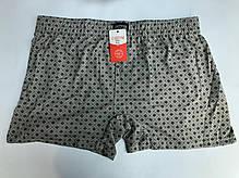Мужские шорты (семейные трусы батал 5,6,7) Марка «CASTOM» арт.58009, фото 2
