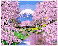 Картина по номерам GX 9506 Весна в Японии