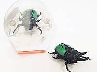 """Насекомое """" жук- Рогач """"  на батарейках , мини-робот, интерактивная игрушка """"Crazy insect"""""""