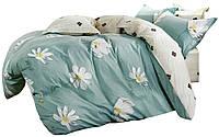 Комплект постельного белья Хлопковый Сатин NR C1292 Oulaiya 7559 Зеленый