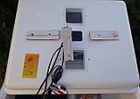 Инкубатор Несушка - 77/220/12в - автомат (аналоговый) с тенами, фото 7