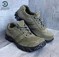 Кроссовки тактические замшевые DMS-10 олива