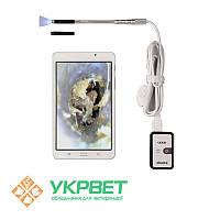 Цифровой ветеринарный отоскоп eKuore