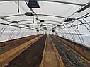 "Фермерская теплица ""Фермер"" 8х12 под два слоя плёнки, фото 4"