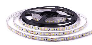 Светодиодная LED лента гибкая 12V PROLUM IP65 5050\60 Standard