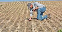 Система нулевой обработки почвы или «No-Till» технология