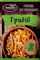 """Пиправа для """"Маринування грибів"""" 40г"""
