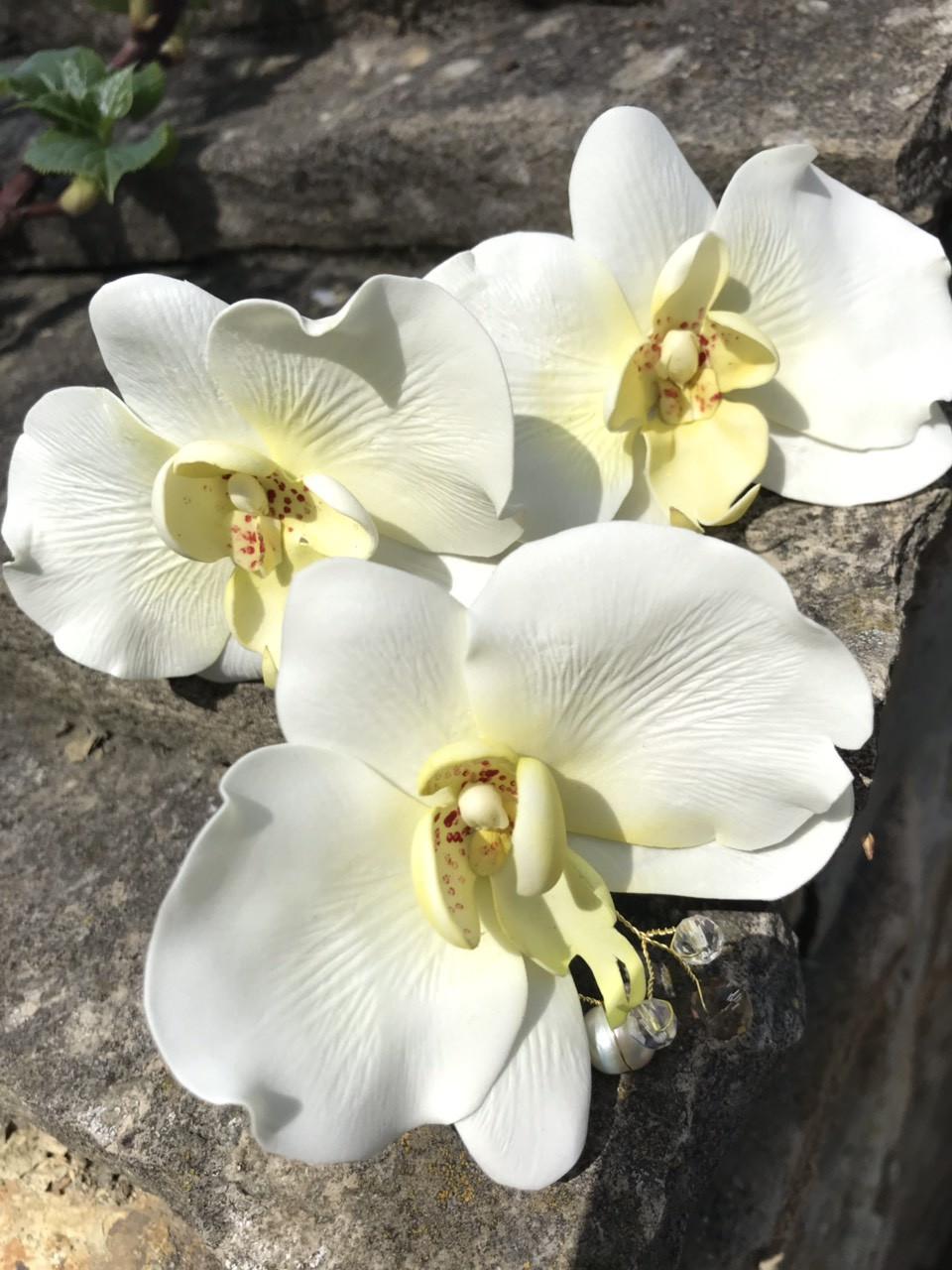 Шпильки Орхідейки в зачіску з іранського фоамірану