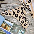 Плавки женские бразилиана, фото 2