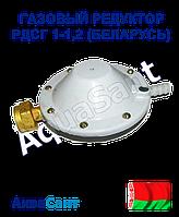 Газовый редуктор РДСГ 1-1,2 (Беларусь)