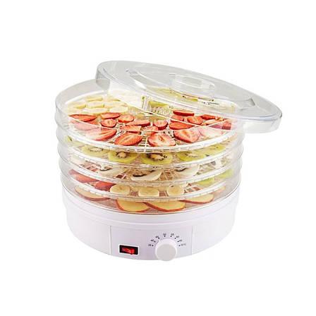 Сушилка для овощей и фруктов с терморегулятором , фото 2