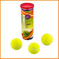 Мяч для тенниса King Bekket 3 штуки