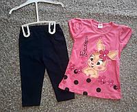 Комплект двойка для девочек Турция 2-6 лет
