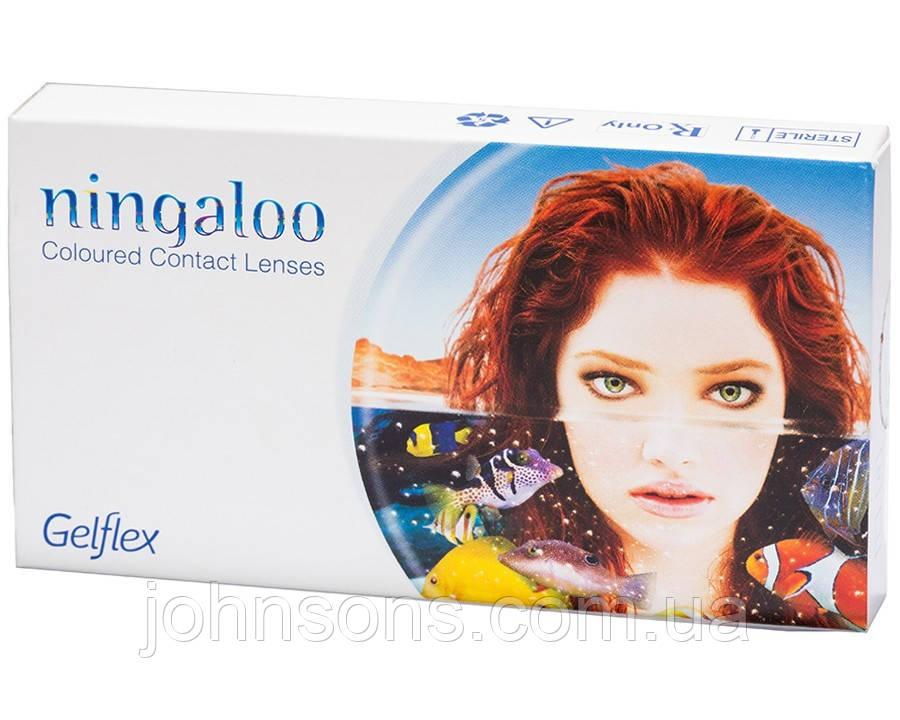 Контактные линзы Ningaloo с диоптриями и без диоптрий (1 штука в упаковке)