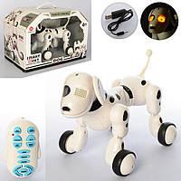 Smart Dog Робот-собака на р/у від акумулятора, розмовляє, їздить, танцює. 6013-3, фото 1